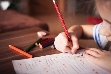 新学習指導要領・探究学習とは?子ども達の輝く未来につながる学習方法